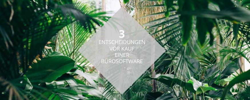 3entscheidungen_softwaredschungel